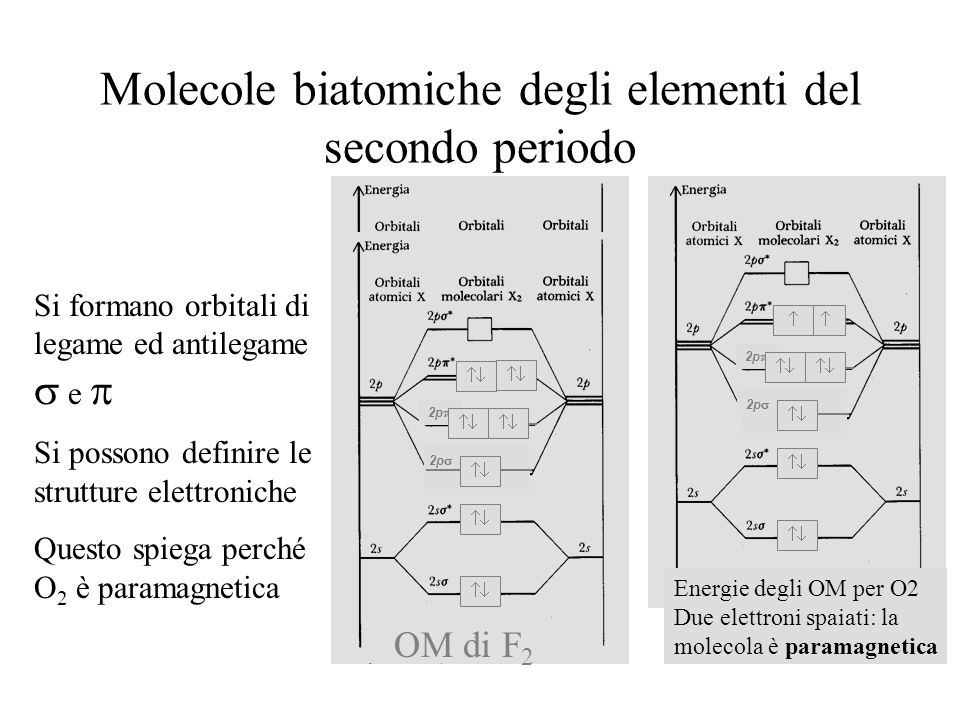 Molecole biatomiche degli elementi del secondo periodo