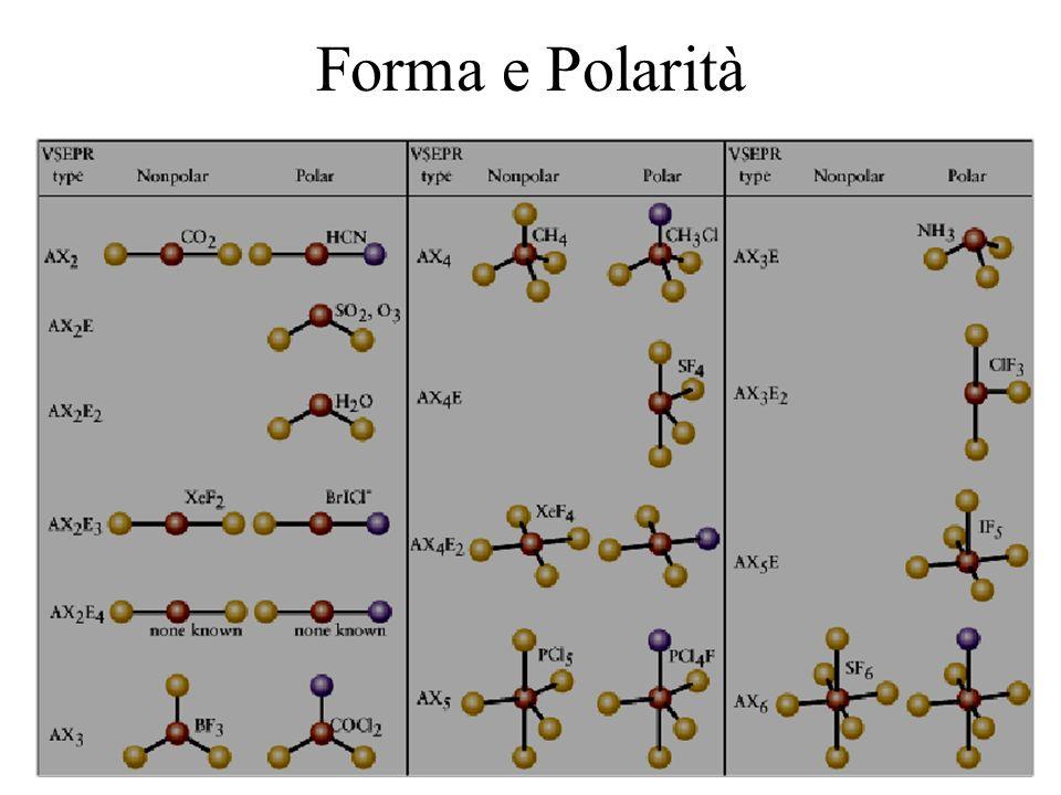 Forma e Polarità