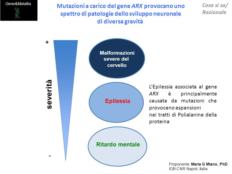 severità Mutazioni a carico del gene ARX provocano uno