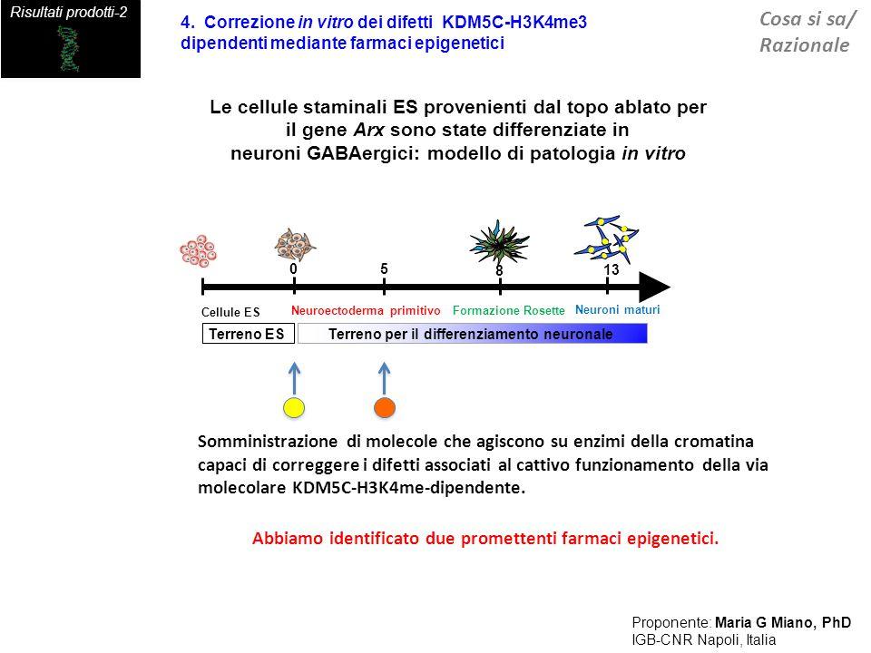 Proponente: Maria G Miano, PhD
