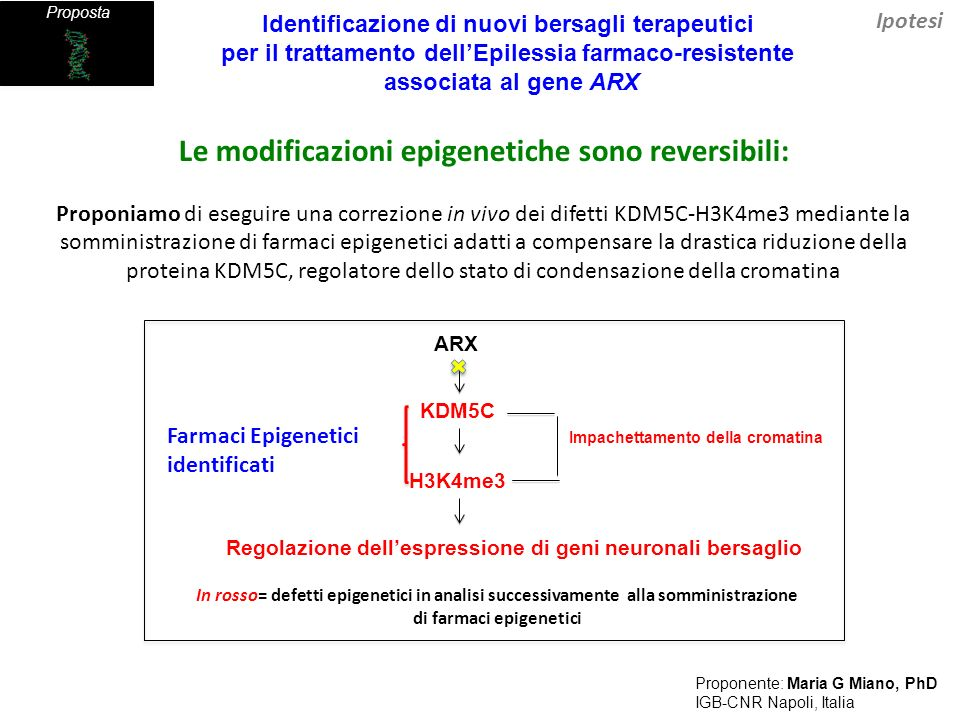 Le modificazioni epigenetiche sono reversibili: