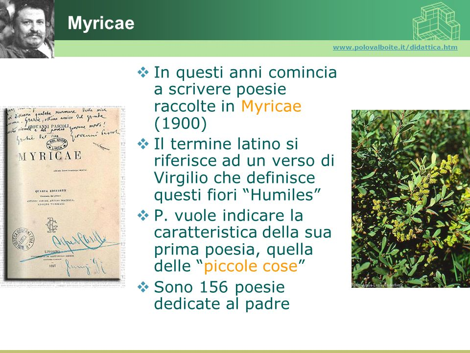 Myricae www.polovalboite.it/didattica.htm. In questi anni comincia a scrivere poesie raccolte in Myricae (1900)