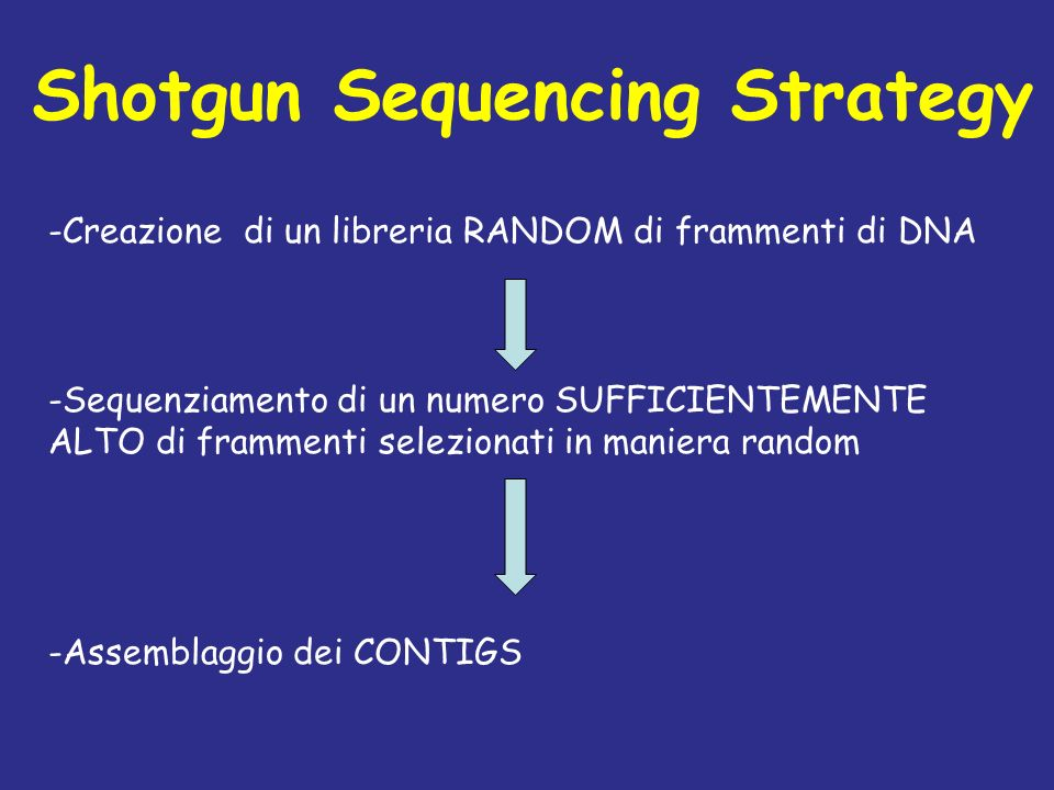 Shotgun Sequencing Strategy