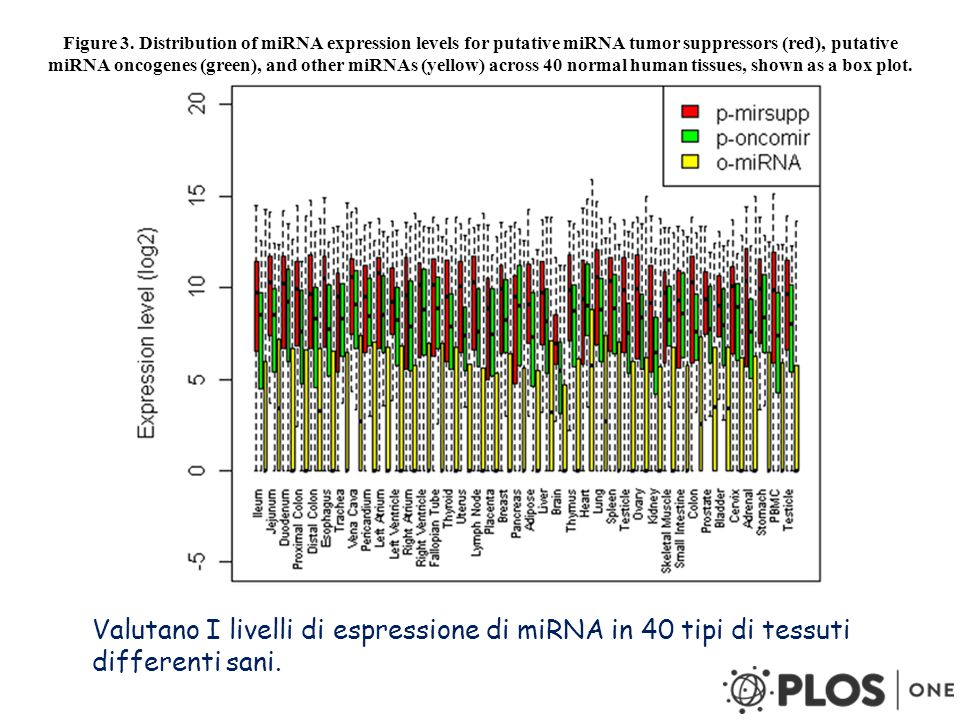 Figure 3. Distribution of miRNA expression levels for putative miRNA tumor suppressors (red), putative miRNA oncogenes (green), and other miRNAs (yellow) across 40 normal human tissues, shown as a box plot.