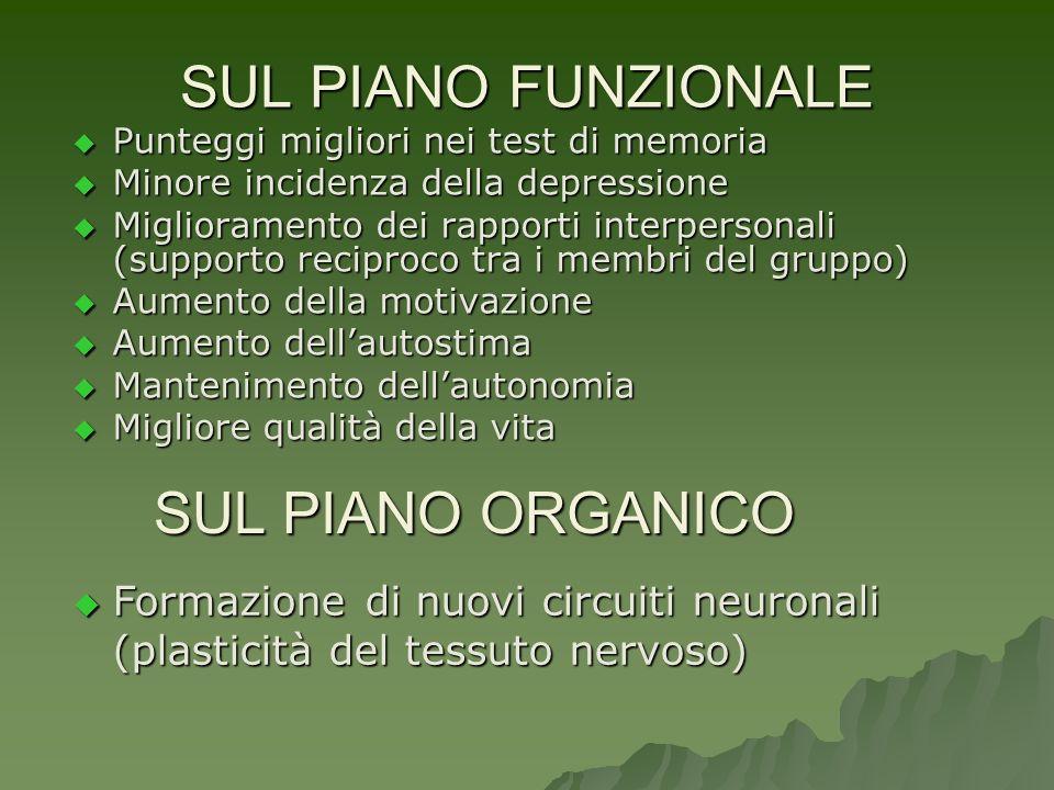 SUL PIANO FUNZIONALE SUL PIANO ORGANICO