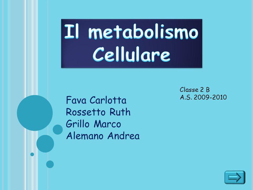 Il metabolismo Cellulare