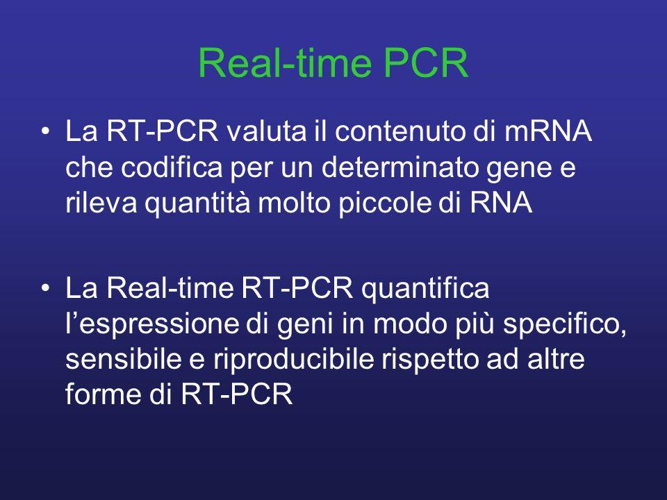 Real-time PCR La RT-PCR valuta il contenuto di mRNA che codifica per un determinato gene e rileva quantità molto piccole di RNA.