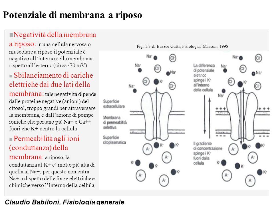 Potenziale di membrana a riposo