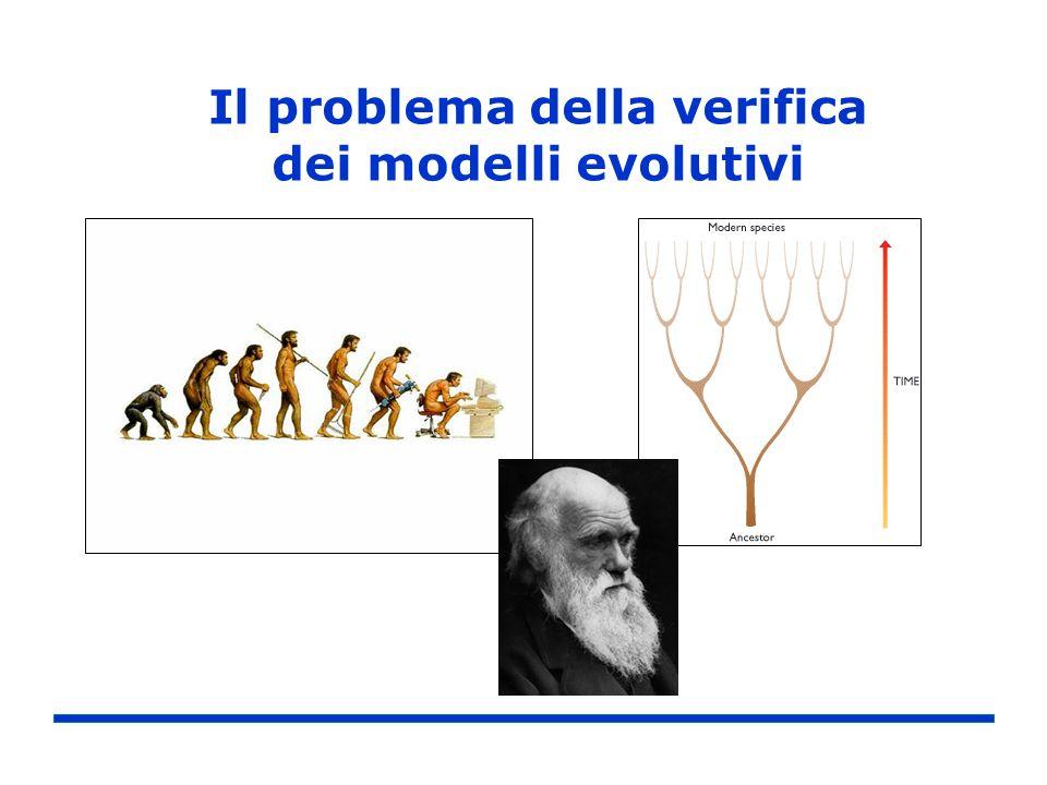 Il problema della verifica dei modelli evolutivi