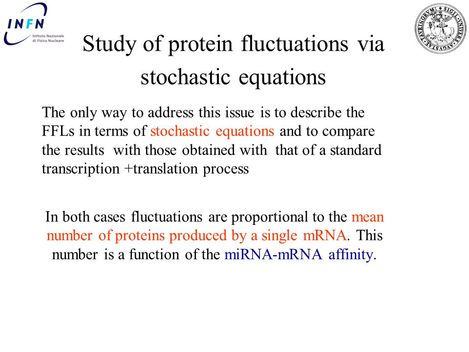 Study of protein fluctuations via stochastic equations
