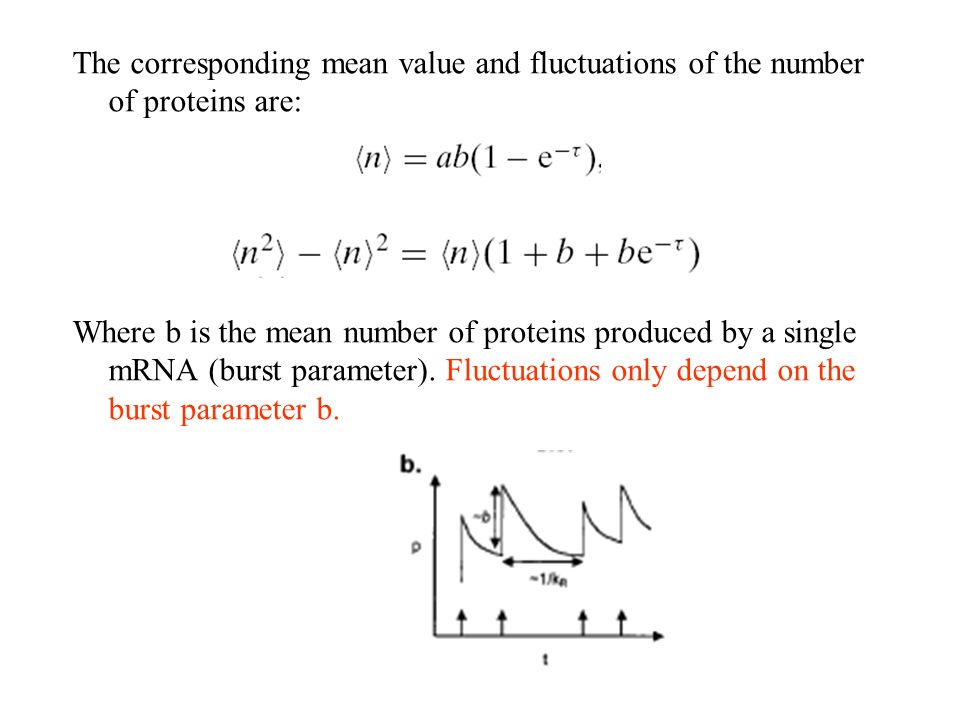 The corresponding mean value and fluctuations of the number of proteins are: