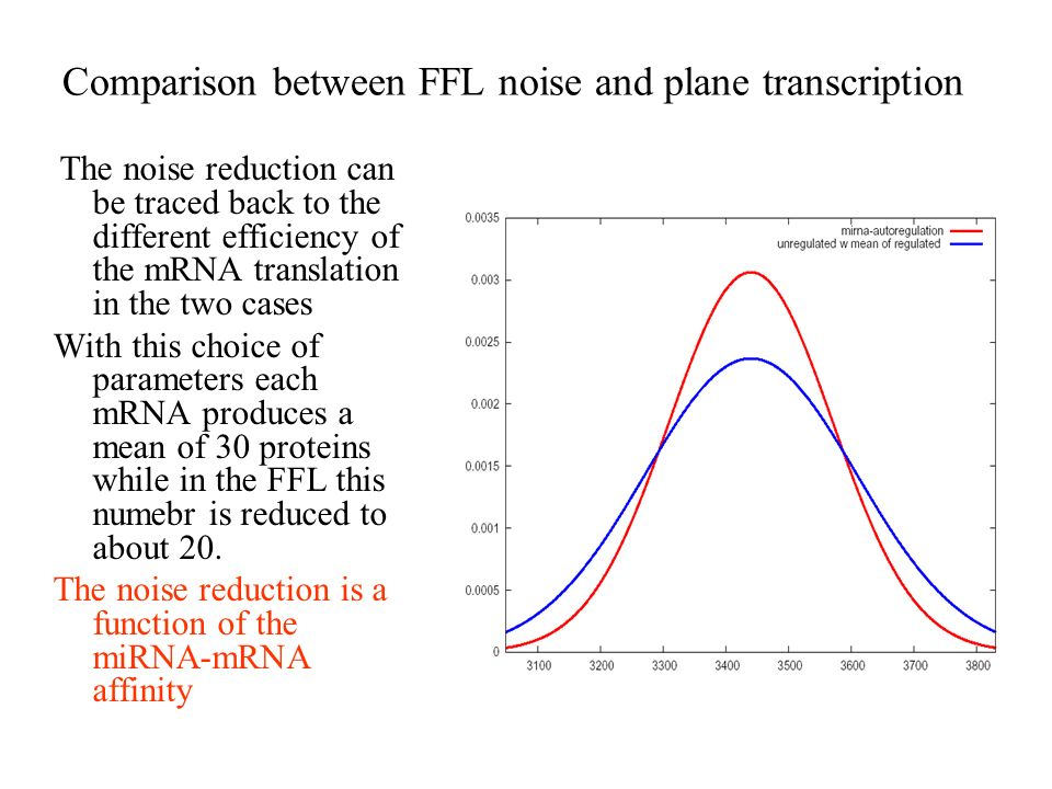 Comparison between FFL noise and plane transcription