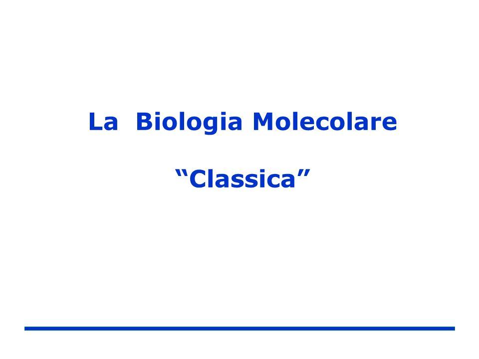 La Biologia Molecolare Classica