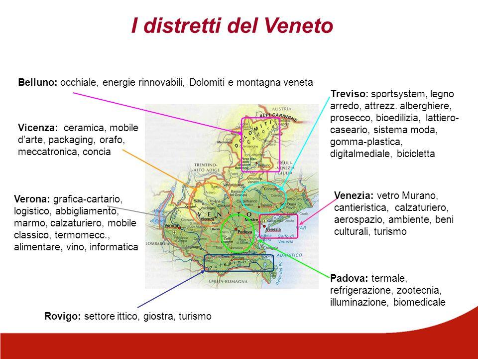 I distretti del Veneto Belluno: occhiale, energie rinnovabili, Dolomiti e montagna veneta.