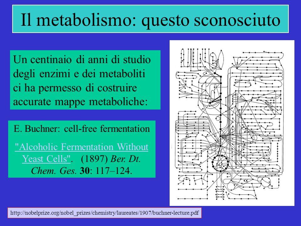 Il metabolismo: questo sconosciuto