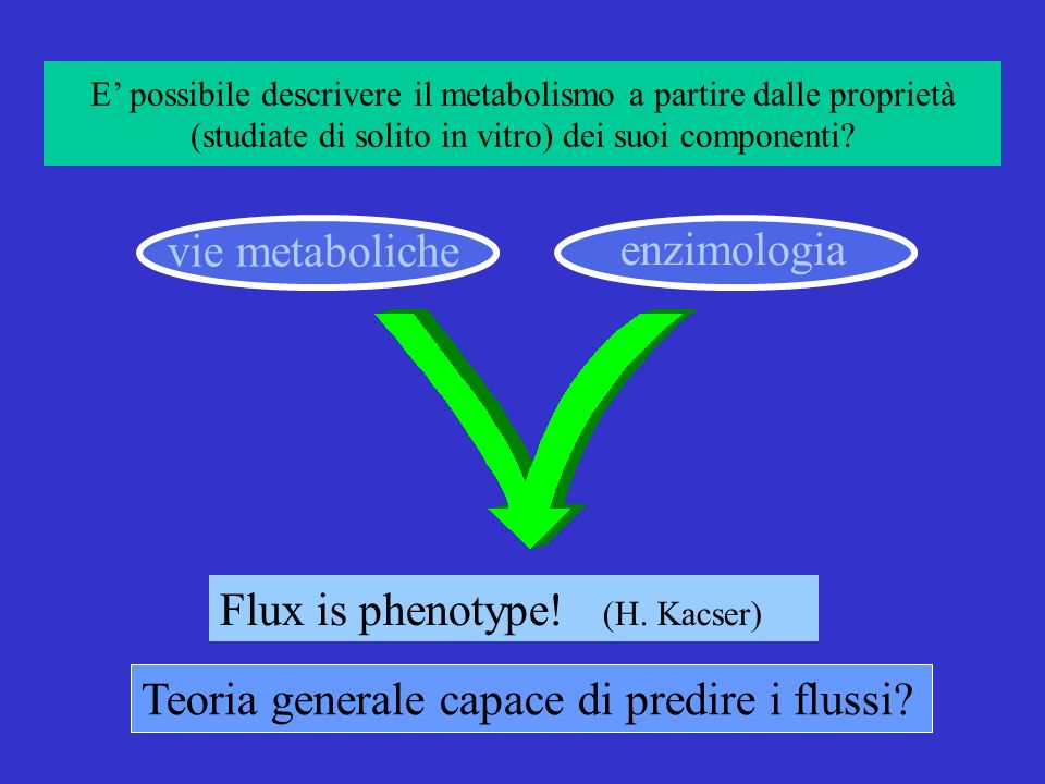 Flux is phenotype! (H. Kacser)