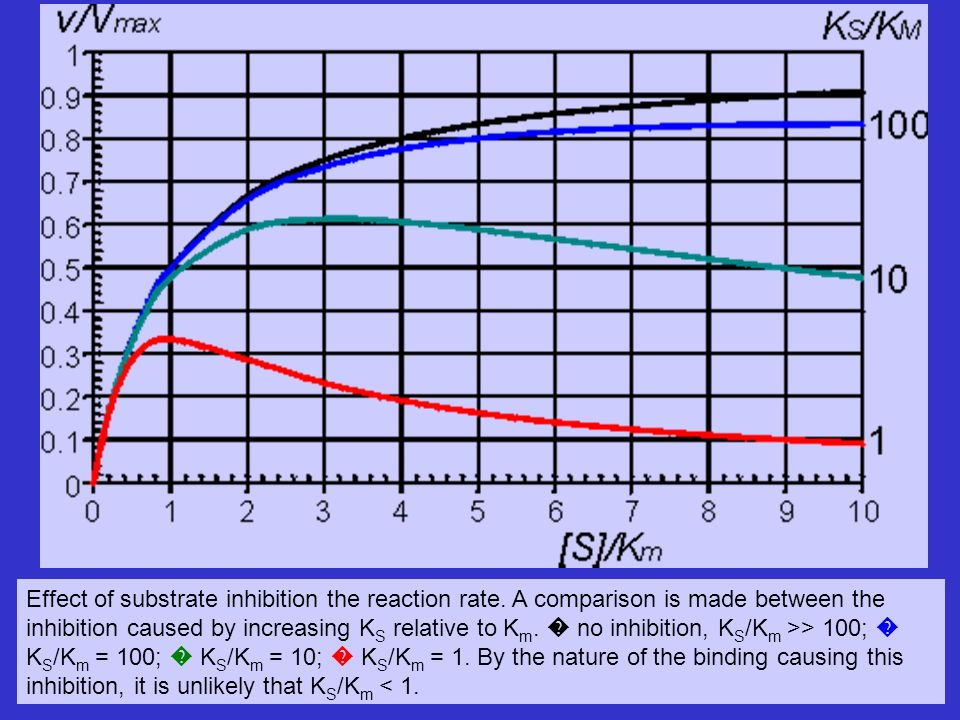 Effect of substrate inhibition the reaction rate