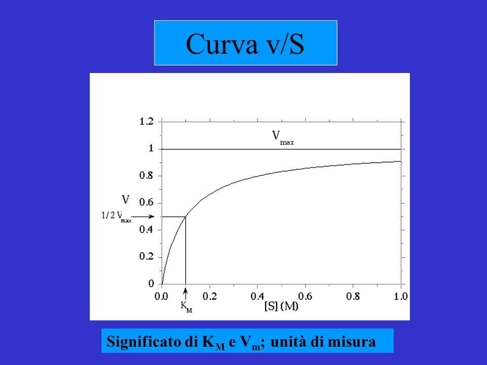 Curva v/S Significato di KM e Vm; unità di misura