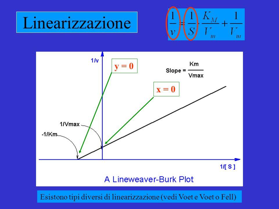 Linearizzazione y = 0 x = 0 Esistono tipi diversi di linearizzazione (vedi Voet e Voet o Fell)