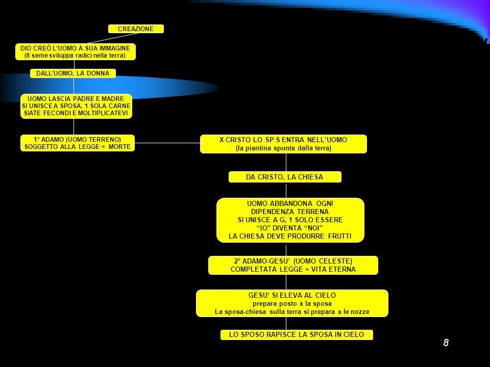 X CRISTO LO SP S ENTRA NELL'UOMO (la piantina spunta dalla terra)