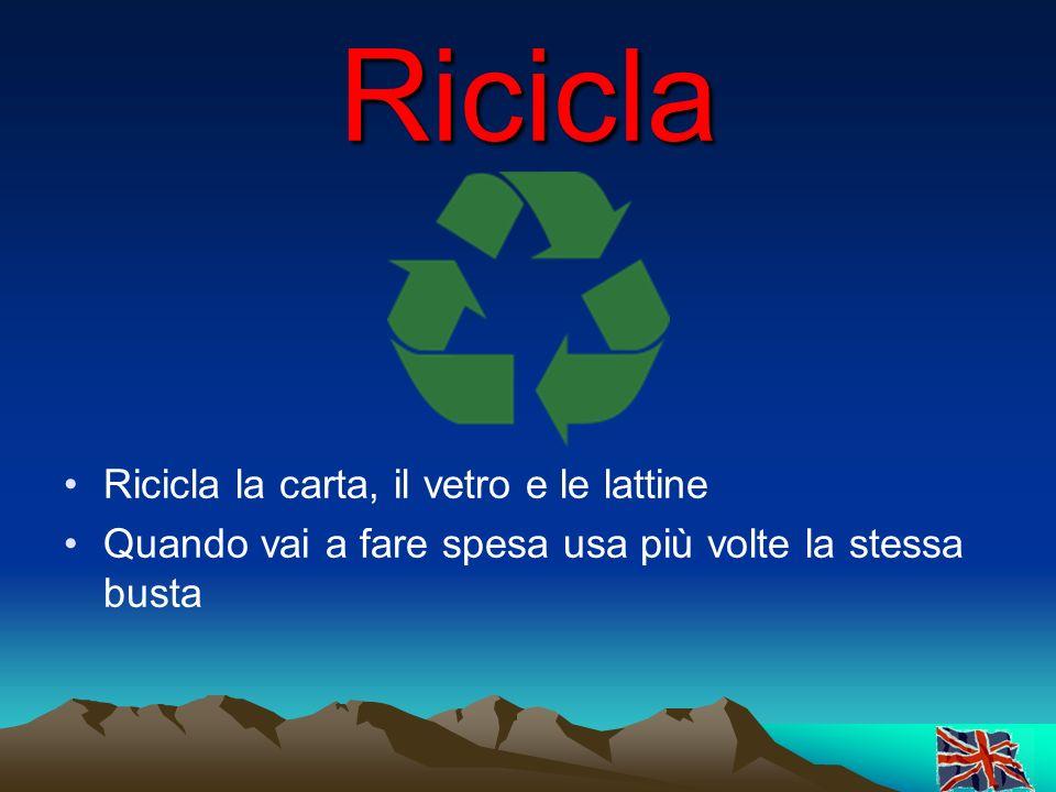 Ricicla Ricicla la carta, il vetro e le lattine