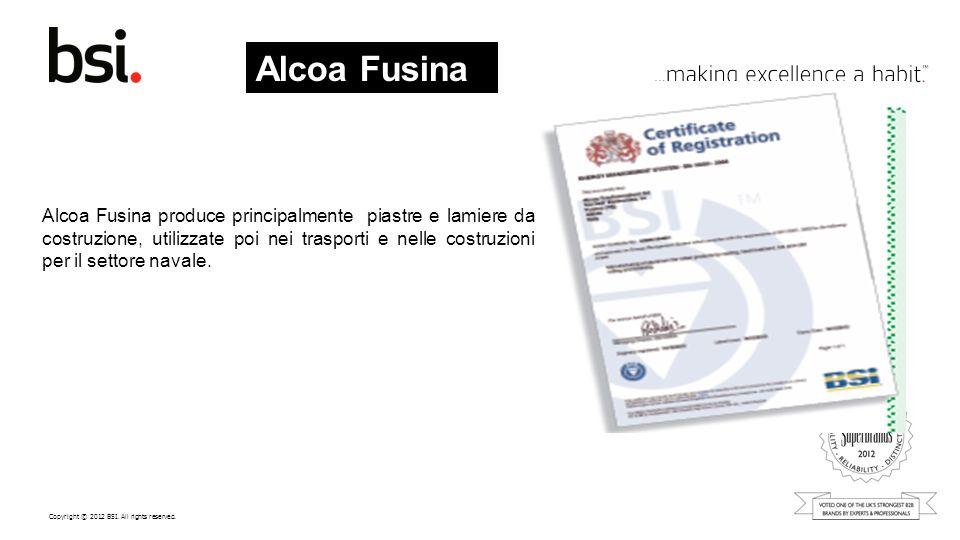 Alcoa Fusina