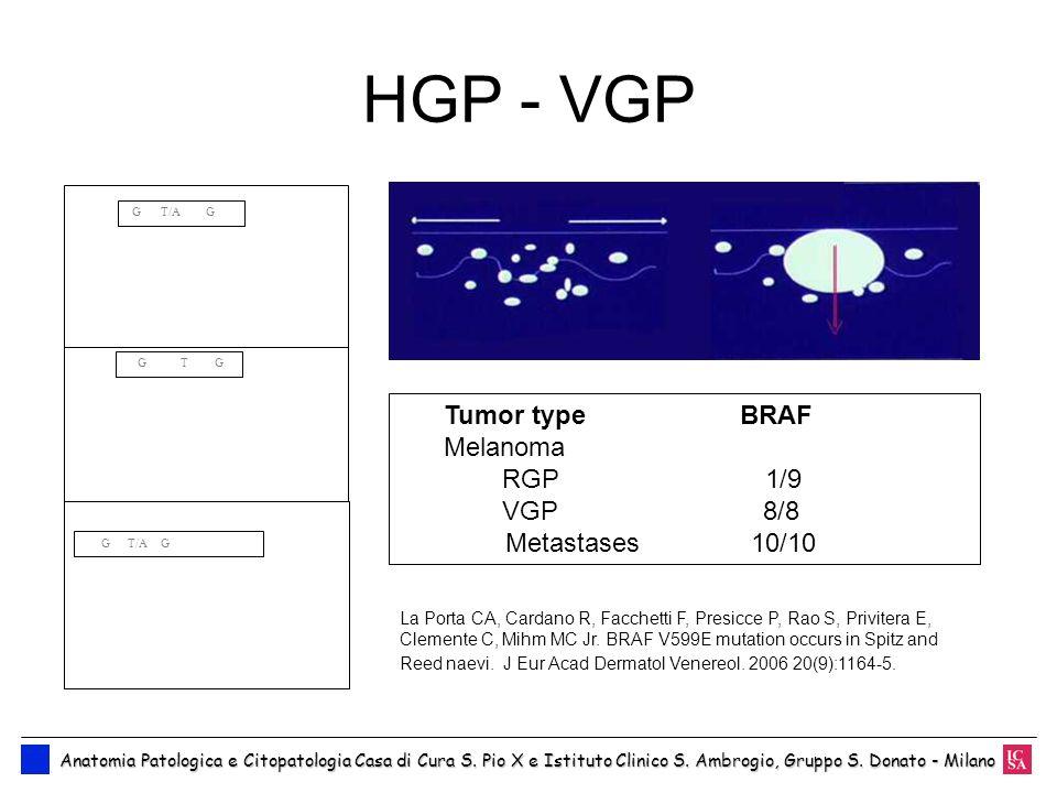HGP - VGP Tumor type BRAF Melanoma RGP 1/9 VGP 8/8 Metastases 10/10