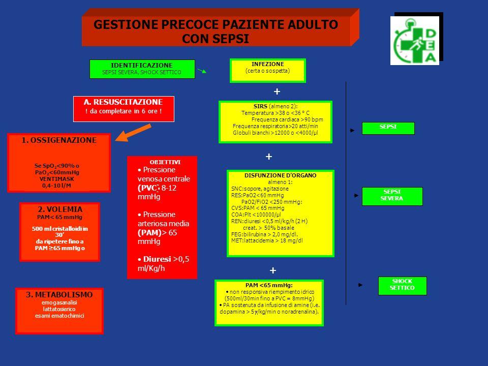 GESTIONE PRECOCE PAZIENTE ADULTO CON SEPSI + + + A. RESUSCITAZIONE