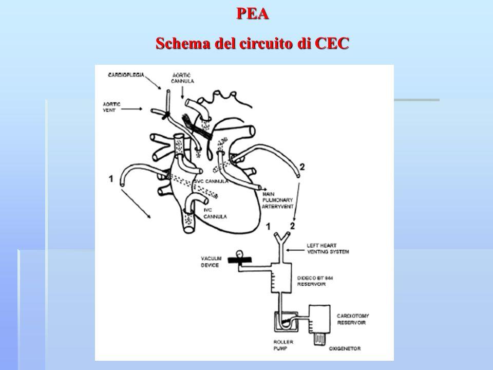 Schema del circuito di CEC