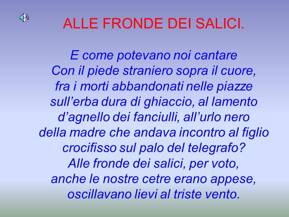 ALLE FRONDE DEI SALICI.