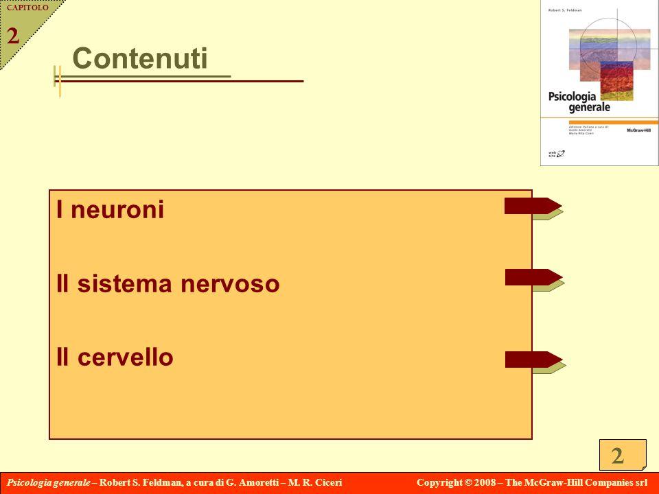 Capitolo 2 Contenuti I neuroni Il sistema nervoso Il cervello