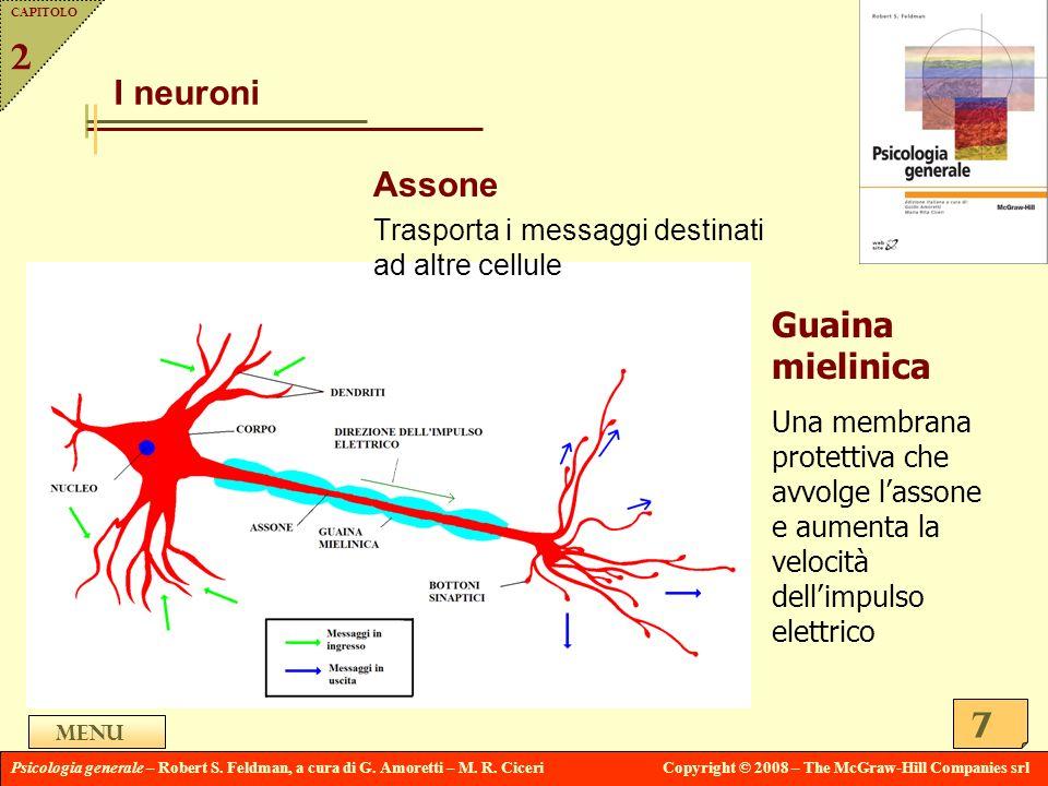 2 I neuroni Assone Guaina mielinica