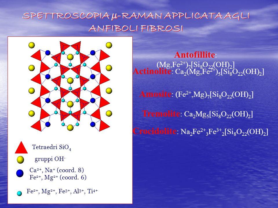 SPETTROSCOPIA µ-RAMAN APPLICATA AGLI ANFIBOLI FIBROSI