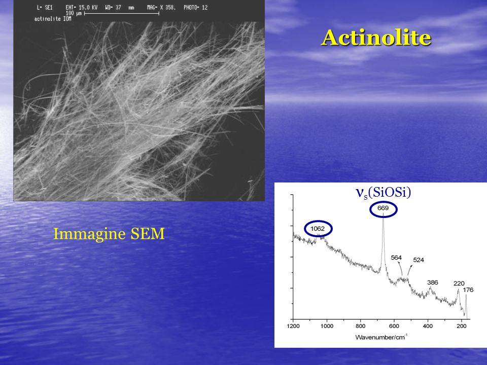 Actinolite νs(SiOSi) Immagine SEM