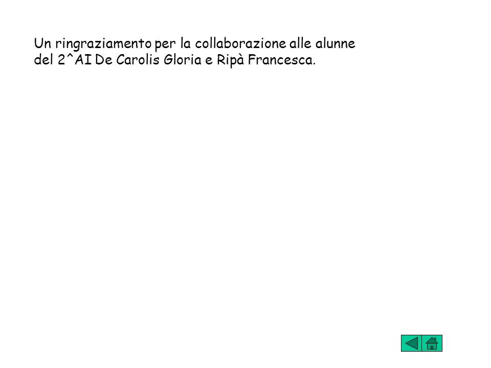 Un ringraziamento per la collaborazione alle alunne del 2^AI De Carolis Gloria e Ripà Francesca.