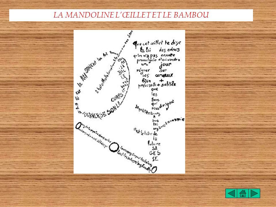 LA MANDOLINE L'ŒILLET ET LE BAMBOU