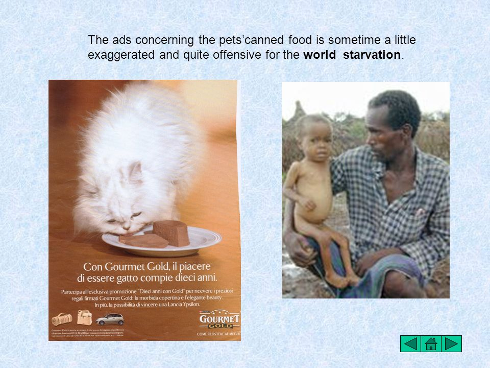The ads concerning the pets'canned food is sometime a little exaggerated and quite offensive for the world starvation.