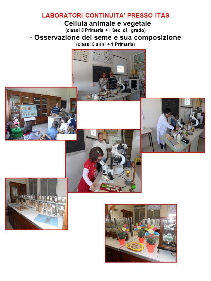 LABORATORI CONTINUITA' PRESSO ITAS - Cellula animale e vegetale (classi 5 Primaria + I Sec.