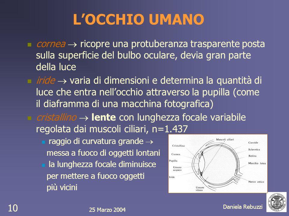 L'OCCHIO UMANOcornea  ricopre una protuberanza trasparente posta sulla superficie del bulbo oculare, devia gran parte della luce.
