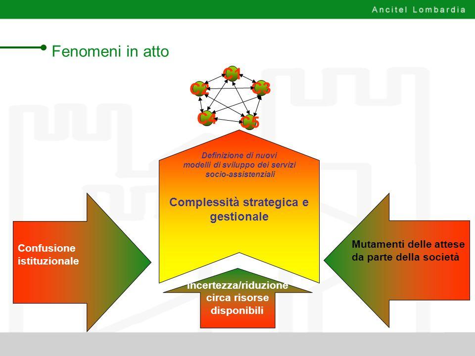 modelli di sviluppo dei servizi Complessità strategica e gestionale