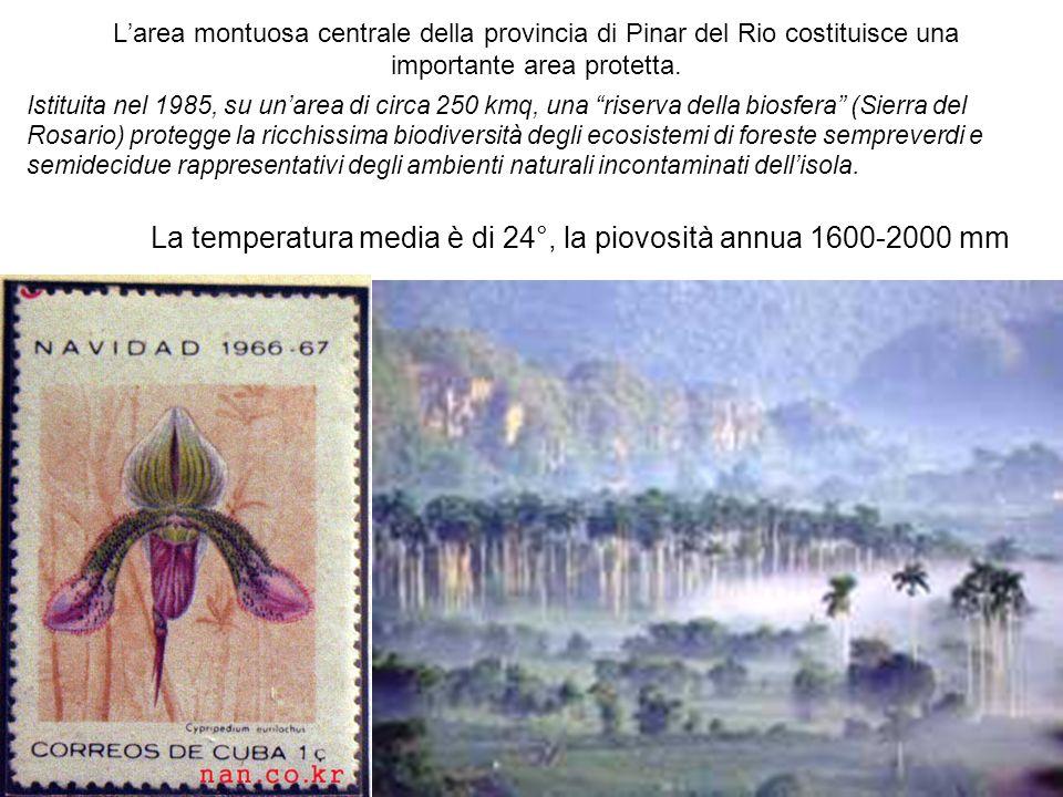 La temperatura media è di 24°, la piovosità annua 1600-2000 mm