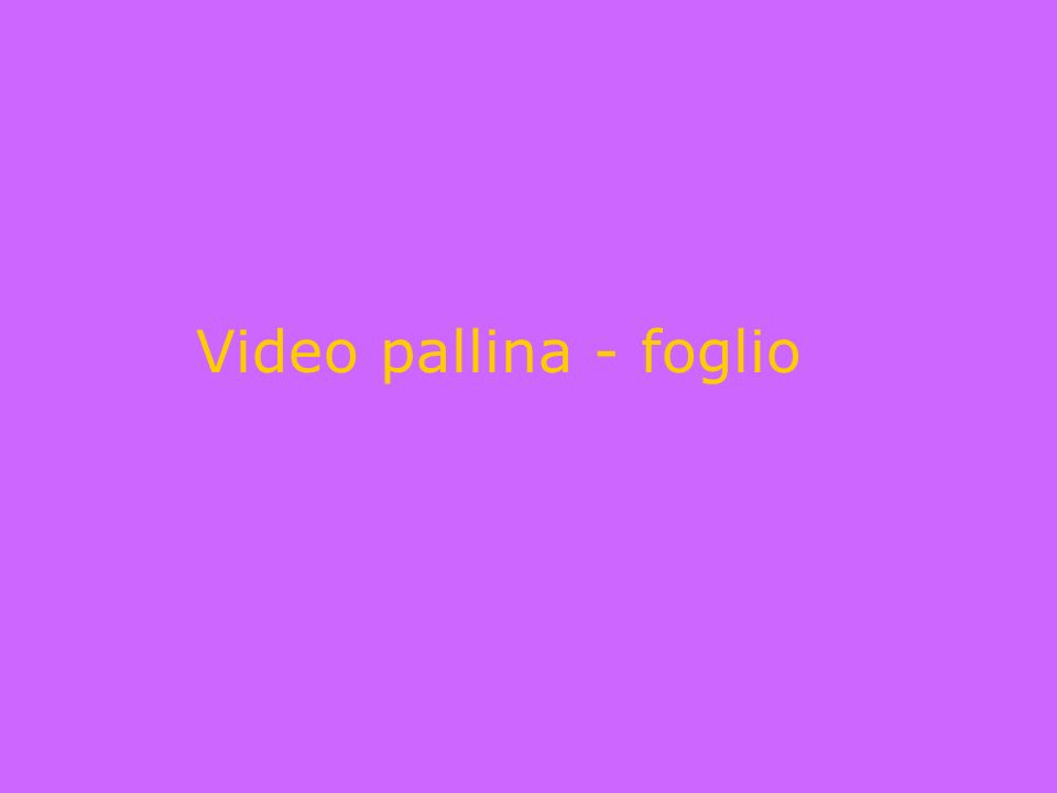 Video pallina - foglio