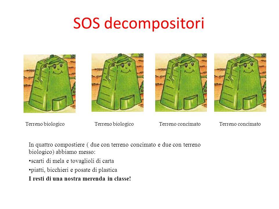 SOS decompositori Terreno biologico. Terreno biologico. Terreno concimato. Terreno concimato.