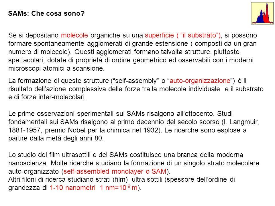 SAMs: Che cosa sono