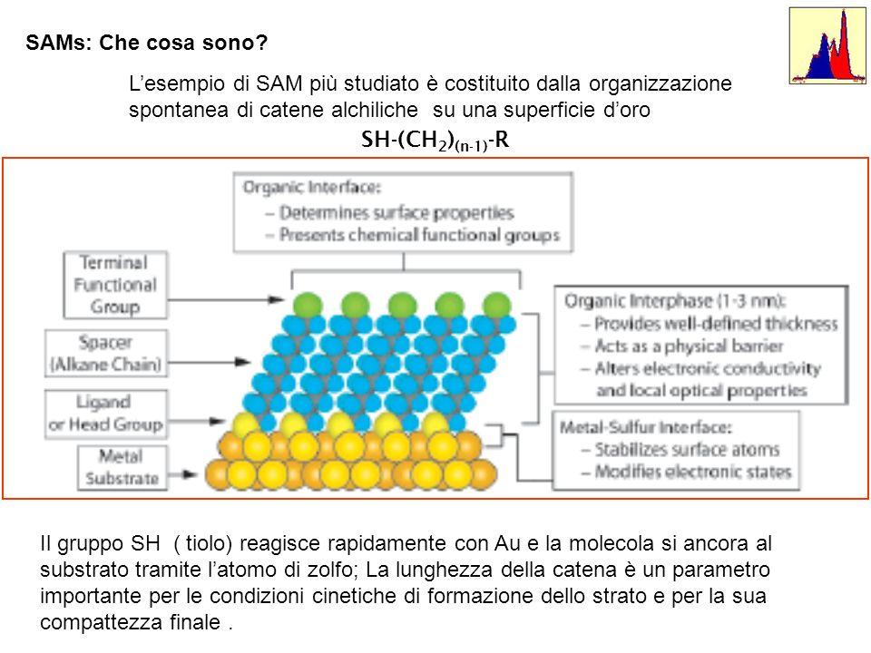 SAMs: Che cosa sono L'esempio di SAM più studiato è costituito dalla organizzazione spontanea di catene alchiliche su una superficie d'oro.