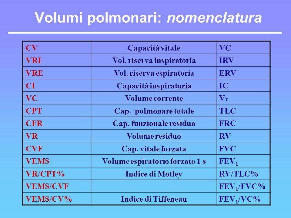Volumi polmonari: nomenclatura