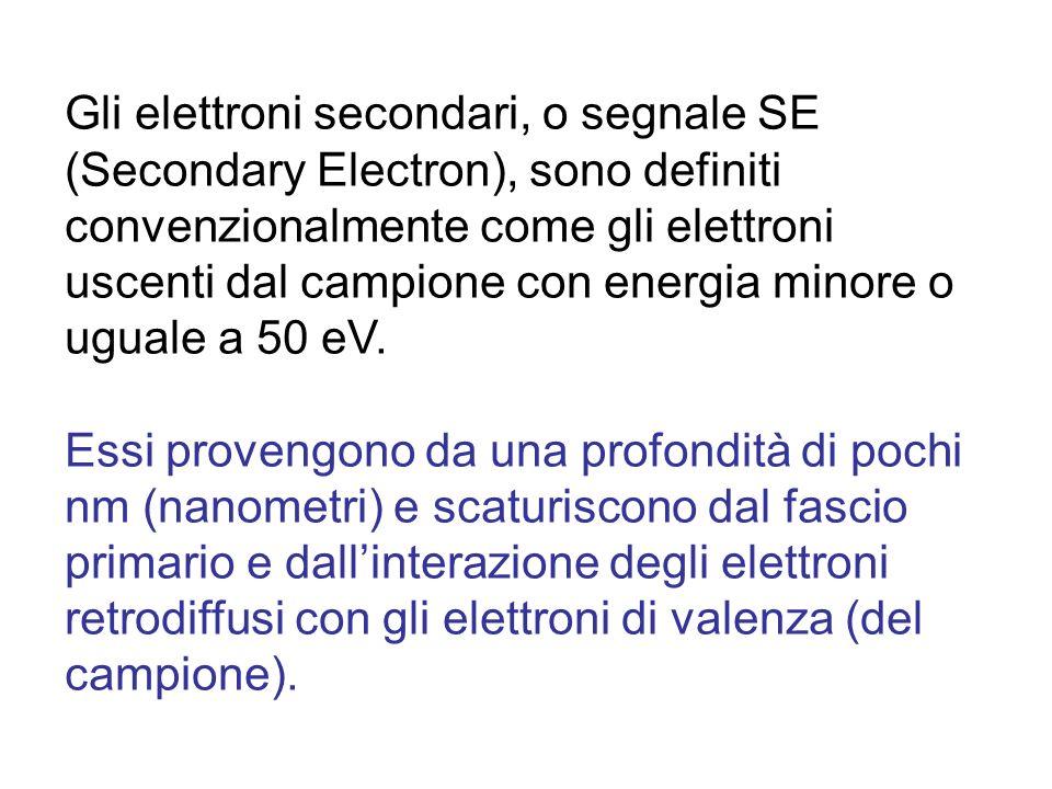 Gli elettroni secondari, o segnale SE (Secondary Electron), sono definiti convenzionalmente come gli elettroni uscenti dal campione con energia minore o uguale a 50 eV.