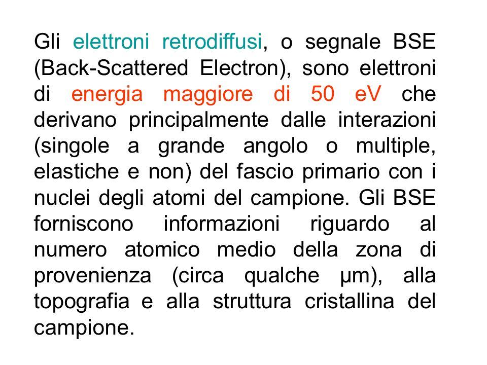 Gli elettroni retrodiffusi, o segnale BSE (Back-Scattered Electron), sono elettroni di energia maggiore di 50 eV che derivano principalmente dalle interazioni (singole a grande angolo o multiple, elastiche e non) del fascio primario con i nuclei degli atomi del campione.