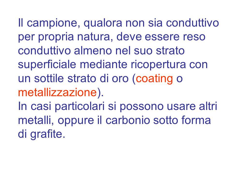 Il campione, qualora non sia conduttivo per propria natura, deve essere reso conduttivo almeno nel suo strato superficiale mediante ricopertura con un sottile strato di oro (coating o metallizzazione).