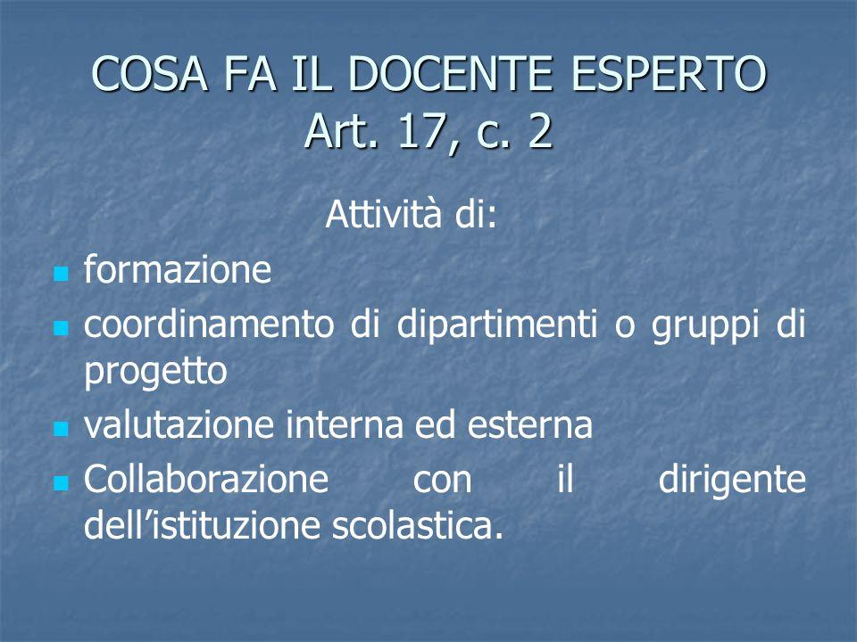 COSA FA IL DOCENTE ESPERTO Art. 17, c. 2